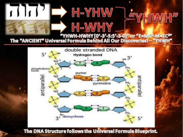 Fundraiser by bob ainuu afamasaga 24 dna 2 blood types kit dna structure parallels the energy matteremc2 and matter energymec2 universes blueprint dna universe invention of 24 dna 2 blood types kit based malvernweather Image collections